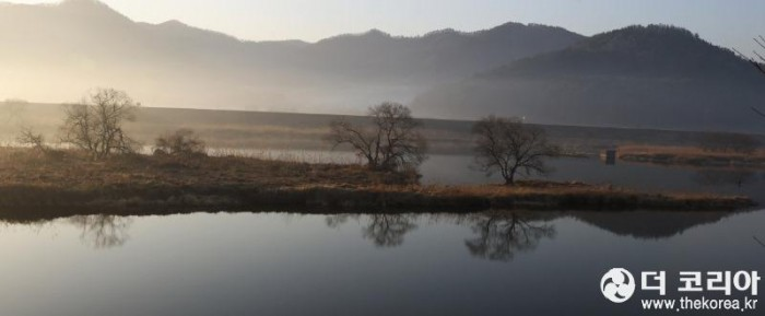 아침 강변.JPG