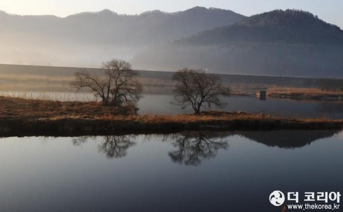 아침 강변2.JPG